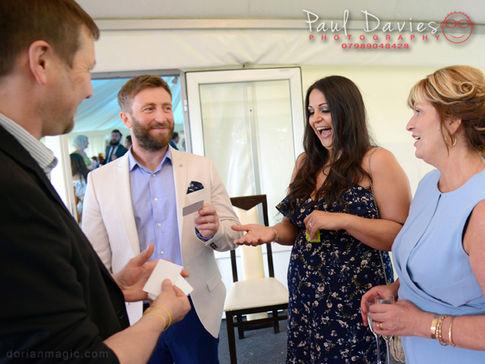 Gower Wedding Magician