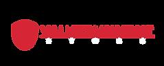 VT logo.png