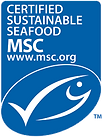 MSC_logo_briosa