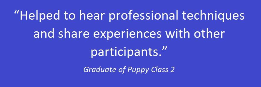 puppy class 06.jpg