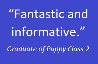 puppy class 05.jpg