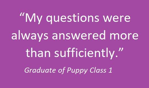 puppy class 02.jpg