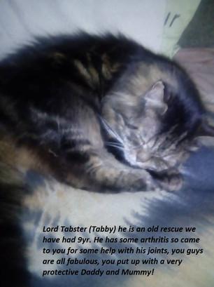 Lord Tabster.jpg
