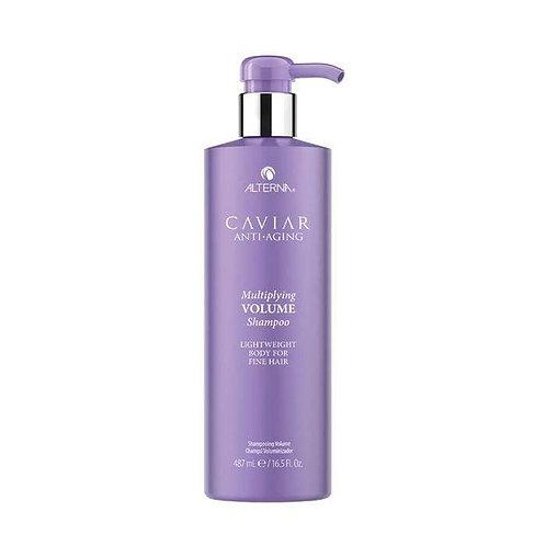 Volume Shampoo [487ml]
