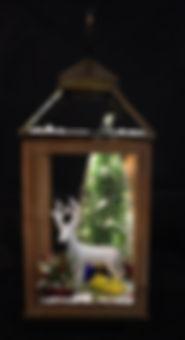 Winter Lantern.JPG