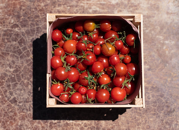 Tomate cherry kg
