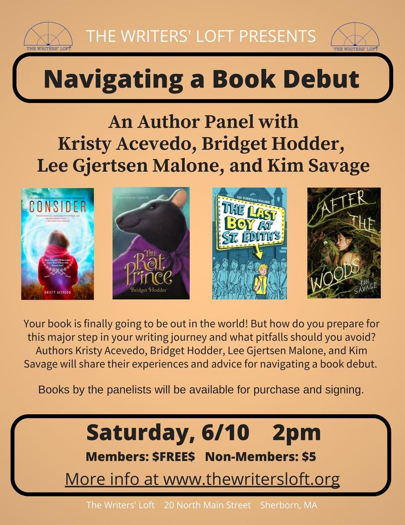 Debut Novel Panel Flyer