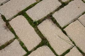 When It's Time to Repair Your Interlocking Stone
