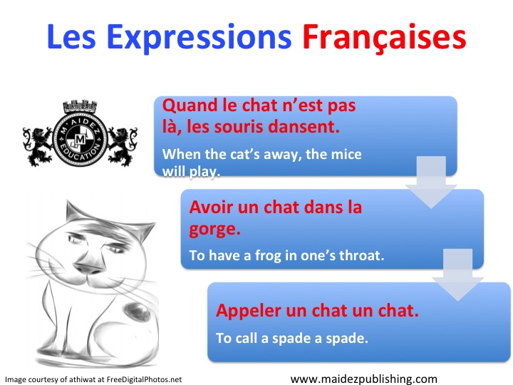 """French expressions with the word """"chat"""" (cat)   M aidez - French Classes  and Tutoring fe7510ae7d57"""