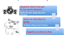 "French expressions with the word ""chat"" (cat)"