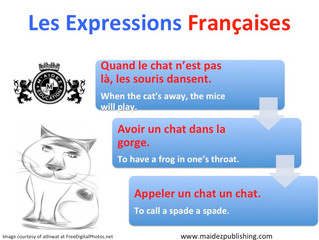 """French expressions with the word """"chat"""" (cat)"""