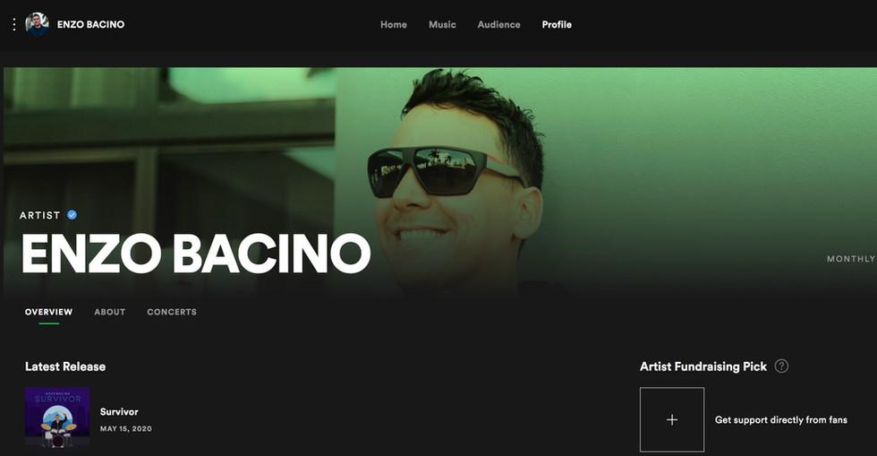SPOTIFY ARTIST - ENZO BACINO