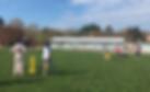 2019_CricketSet.png