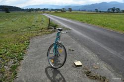 Mein Rad in Zeltweg