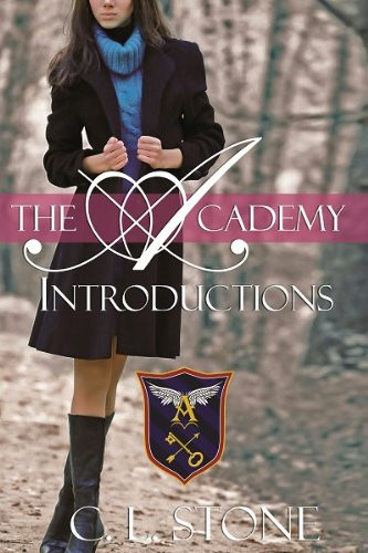 Book Cover of Introductions by CL Stone Reverse Harem Novel