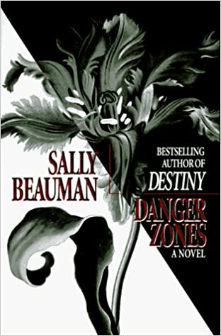 Book Cover Danger Zone Erotica for Women