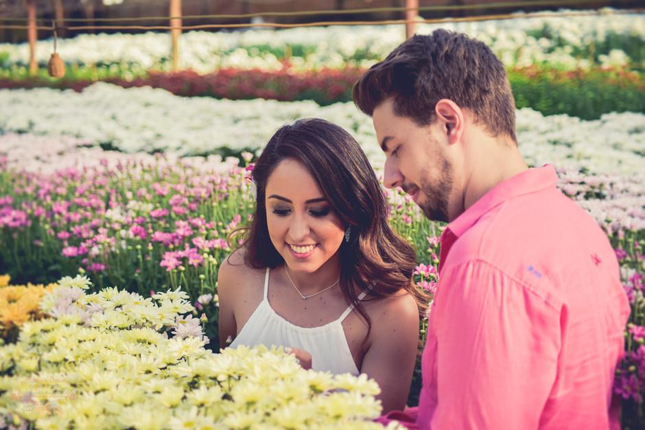 Pre-Wedding-Nathalia-Eduardo-Holambra__75D6699.jpg