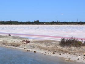 Restoring Salt-pans in Cadiz