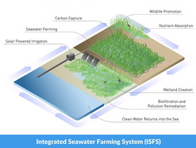 Nature-based Solutions to Combat the Consequences of Climate Change