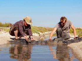 Seawater Solutions in Spain