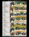 Poster - Dressage Horses
