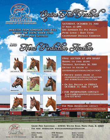 Flyer - Equine Farm