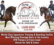 Website Ad - Equine Farm