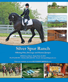 Full Page Ad - Equine Stable