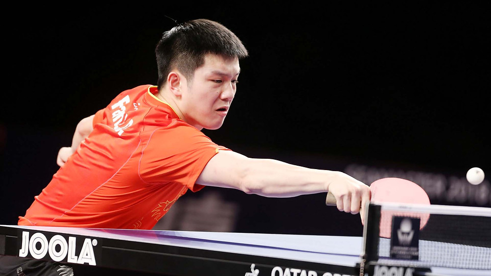 Fan Zhendong, number one (Photo: Hussein Sayed)