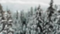 Screen Shot 2020-01-18 at 5.26.14 AM.png