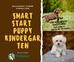 Smart Start Puppy Kindergarten