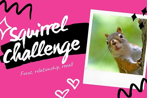 Sexier than a Squirrel Challenge Quarantine Fun