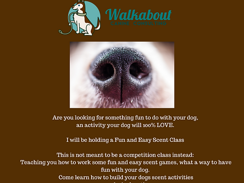 Fun and Easy Scent Work Class