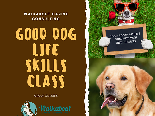 Good Dog Life Skills Class