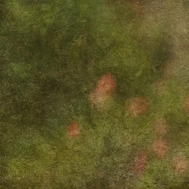 Snímek obrazovky 2021-04-22 v16.33.50.