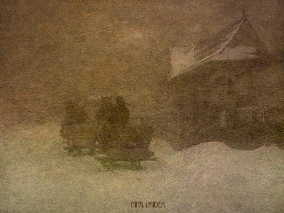 Koně_ve_sněhu_II_KOZO.jpg