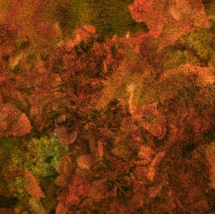 Snímek obrazovky 2021-02-11 v17.22.54.
