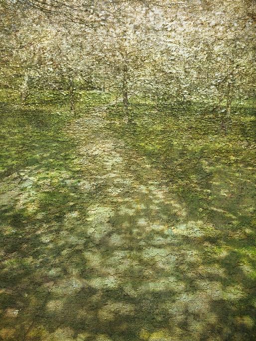 Snímek obrazovky 2021-04-15 v19.03.39.