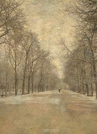 Luxembourg un jour de neige...