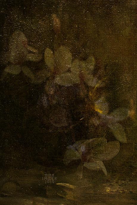 Magnolia...