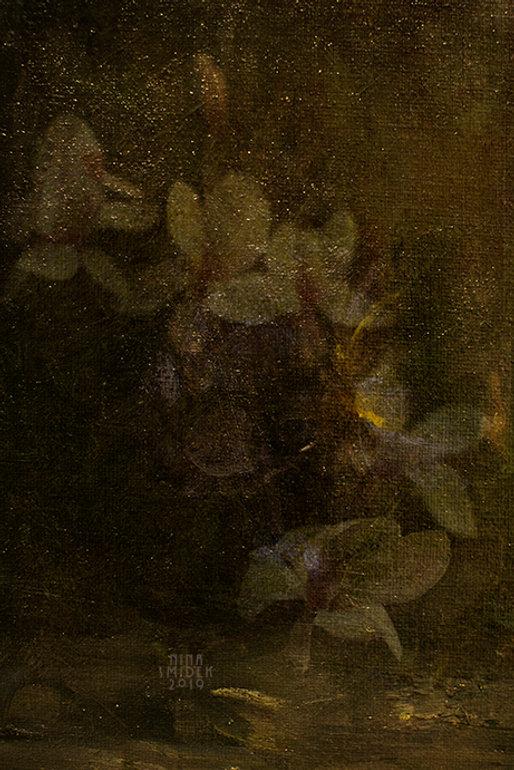 Magnolia... web.jpg