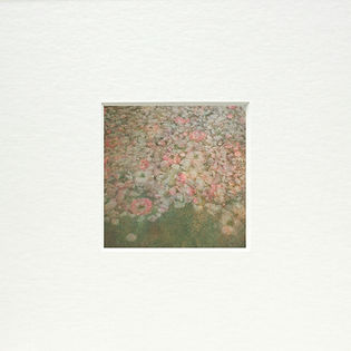 passe-partout carré roses d'ophélie.jp