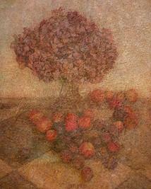 Hortensias, prunes et pommes de la Vierge Marie