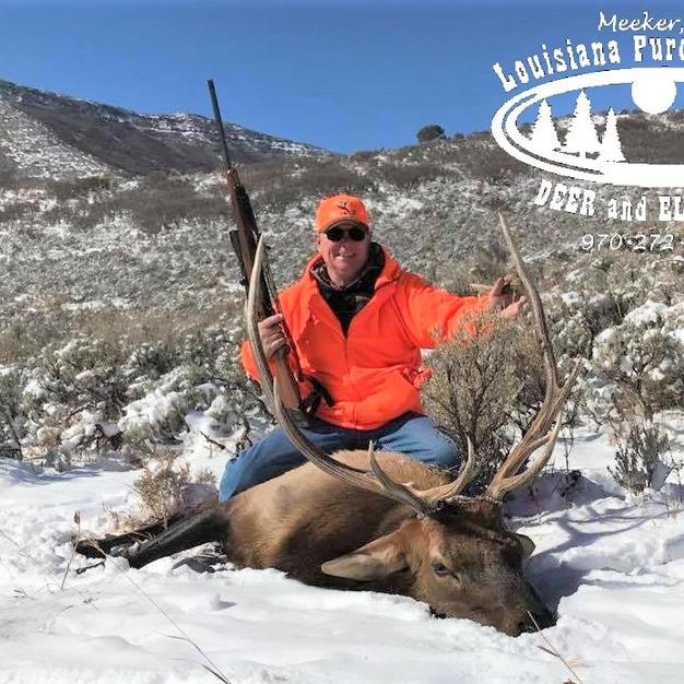 Don - 2nd rifle season bull