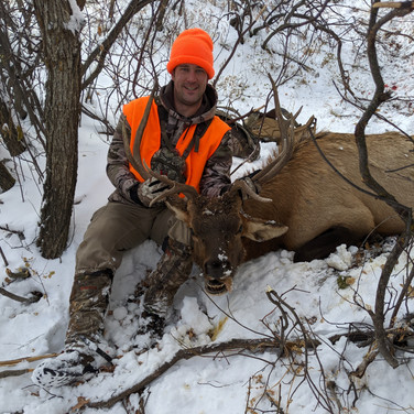 Brent's bull 2nd rifle season