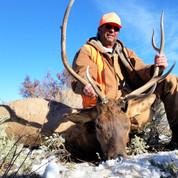 Mark's 3rd season bull