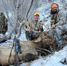 Mitchell - 3rd rifle season bull