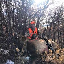 Austin - 4th rifle season bull