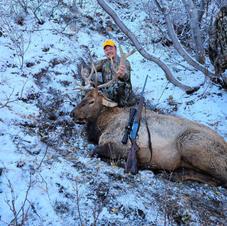 Dillon - 3rd rifle season bull