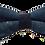 Thumbnail: Noeud Papillon 5